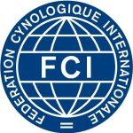 Międzynarodowa Federacja Kynologicznaaj FCI Labrador Retriever Perfect Breed